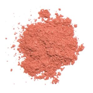 Blush Apricot Toast makeup
